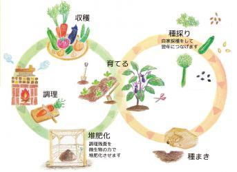 eky循環
